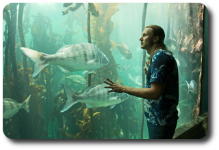 Pisces Man ⋆ Astromatcha